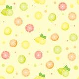 Seamless citrus pattern. Stock Photography