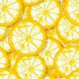 Seamless citrus pattern Stock Photo