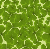 Seamless clover background Royalty Free Stock Photo
