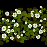 A seamless clover design Royalty Free Stock Photos