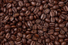 Seamless Coffee Bean Background. Seamless background of freshly roasted coffee beans. Can be stitched together for an endless number of beans stock images