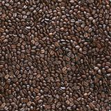Seamless coffee beans background. Royalty Free Stock Photos