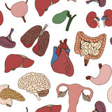 Seamless color human organs pattern Royalty Free Stock Image