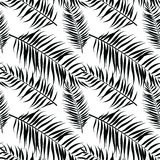 Seamless color palm leaves pattern. Flat style. Black and white Stock Image