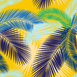 Seamless color palm leaves pattern Royalty Free Stock Photo