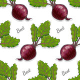 Seamless color pattern with beet Stock Photo