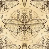 Seamless color pattern: mantis, larva, alchemical circle of transformations. Background - imitation of old paper, the book, parchment. Esoteric, mysticism Royalty Free Stock Photos