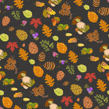 Seamless color wild elements of nature Stock Photography