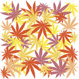 Seamless with colored leaves Royalty Free Stock Photos