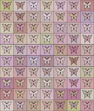 Seamless colored pattern with butterflies Stock Photos