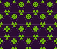 Seamless colored pattern. Print of green color clovers four and three leaves and lines of triangles on dark purple background. Stock Image