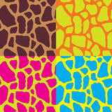 Seamless colorful abstract graphic zebra and giraffe stripe text Royalty Free Stock Image