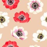 Seamless colorful anemones Stock Photos