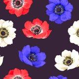 Seamless colorful anemones Stock Image