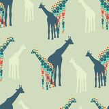 Seamless Colorful Background made of Giraffes Stock Photography