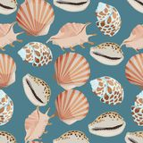 Seamless colorful background made of shell and conch in flat des Royalty Free Stock Image