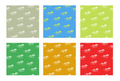 Seamless colorful bright backgrounds with zebras Royalty Free Stock Image