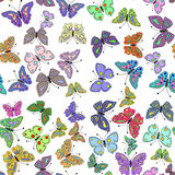 Seamless colorful butterfly pattern. Vector Royalty Free Stock Image