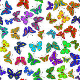 Seamless colorful butterfly pattern. Vector Stock Images