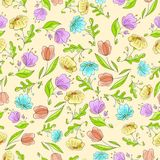 Floral colorful background Royalty Free Stock Photography