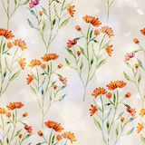 Seamless colorful flower pattern  with watercolor effect. Orange flowers on light background Stock Images