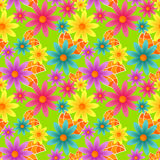 Seamless colorful flowers. Colorful daisies with green background Royalty Free Stock Photo