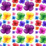 Seamless colorful flowers on white background Royalty Free Stock Photo