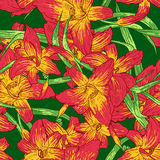Seamless colorful pattern with lilies Stock Images