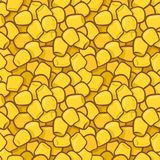 Seamless colorful vector pattern with maize corn kernels. Seamless colorful vector pattern with maize kernels. Suitable for backgrounds, textile, wrapping paper Stock Photos