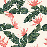 Seamless composition from dark green tropical banana leaves and vector illustration