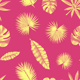 Seamless contour tropical pattern, with exotic leaves. Royalty Free Stock Photography