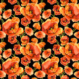 Seamless contrast floral wallpaper with red poppy flowers on black background. Aquarelle hand painted art Stock Image