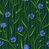 Seamless cornflower green blue pattern background Stock Photography