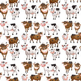 Seamless cow Stock Images