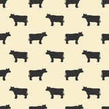 Seamless cow pattern Stock Images