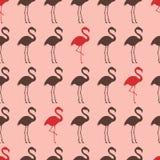 Seamless flamingo bird silhouette pattern Royalty Free Illustration