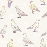 Seamless cute doves Stock Photography