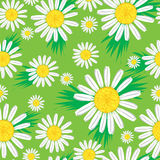Seamless cute floral pattern Stock Image