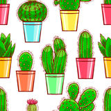 Seamless cute little cactuses Royalty Free Stock Photo
