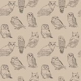 Seamless cute pattern of different species of owls Stock Photo