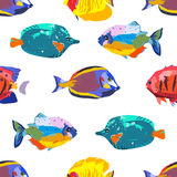 Seamless cute pattern with tropical fish. Seamless cute pattern with a different tropical fish Stock Image