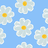 Seamless with daisies Royalty Free Stock Image