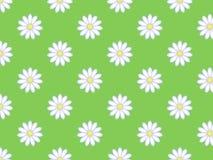 Seamless daisy pattern Stock Photo