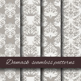 Seamless damask beige pattern set. Stock Photography