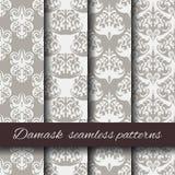 Seamless damask beige pattern set. Stock Photography