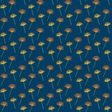 Seamless dandelion dark flower background pattern Royalty Free Stock Photography