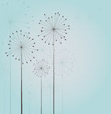 Seamless dandelions Stock Images