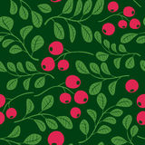 Seamless vector dark green pattern with berries Royalty Free Stock Images
