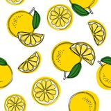 Seamless decorative background with yellow lemons. Lemon hand draw pattern. Vector illustration.  stock illustration