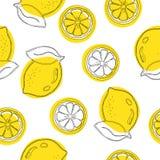 Seamless decorative background with yellow lemons. Lemon hand draw pattern. Vector illustration.  Royalty Free Stock Photo